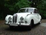 Белый BMW 501/502 вид спереди
