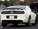 Ford Mustarg GT 2013 (вид сзади)