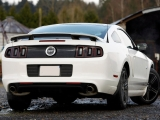 Ford Mustarg GT 2013 (вид сзади)