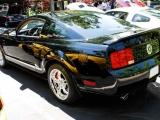 Ford Mustarg 2007