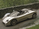 Pagani Zonda Roadster: вид сверху (серый)