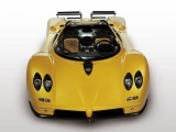 Pagani Zonda Roadster: вид спереди (желтый)